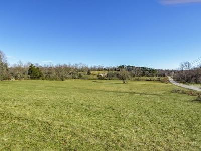 Cookeville Residential Lots & Land For Sale: 0.5 Ac Reeser Lane