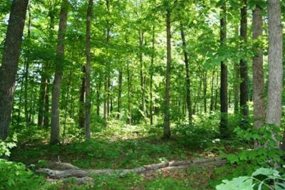 Allons Residential Lots & Land For Sale: Lot 7-8 Cornerstone Pkwy