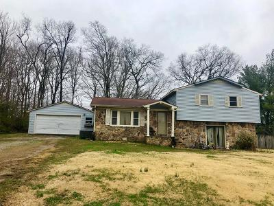 Sparta Single Family Home For Sale: 384 Nugget Street