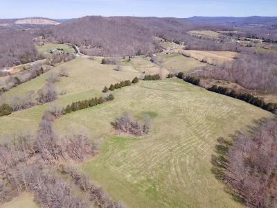 Cookeville TN Residential Lots & Land For Sale: $750,000