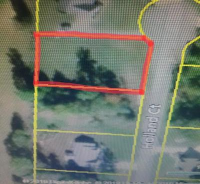 Cookeville TN Residential Lots & Land For Sale: $40,000