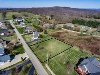 Putnam County Residential Lots & Land For Sale: 3924 Olyvia Court