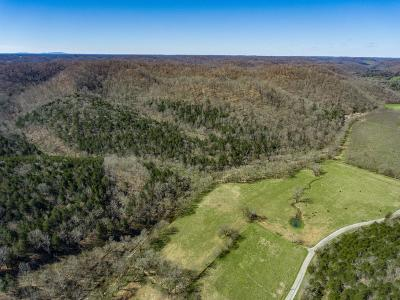 Putnam County Residential Lots & Land For Sale: 83.3 Ac Martin Creek Road