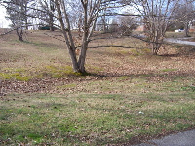 Putnam County Residential Lots & Land For Sale: 130 Big Springs Circle