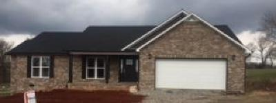 Cookeville Single Family Home For Sale: 1340 Bay View Dr.