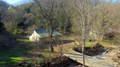 Gainesboro Single Family Home For Sale: 1353 Flatt Dyer Rd.