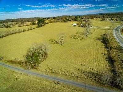 Residential Lots & Land For Sale: 10.14 Ac Gainesboro Grade