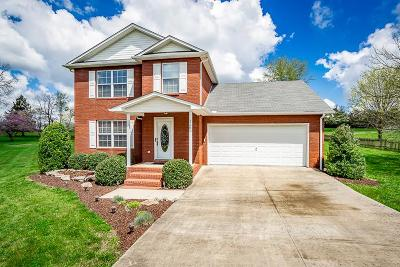 Cookeville Single Family Home For Sale: 1166 Belmont Drive