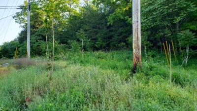 Rickman Residential Lots & Land For Sale: 9.77ac Monterey Highway