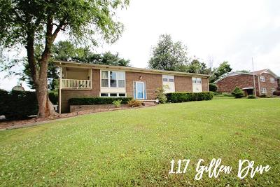 Sparta Single Family Home For Sale: 117 Gillen Drive