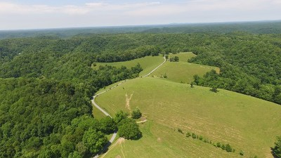 Gainesboro Residential Lots & Land For Sale: 298 Armstrong Lane