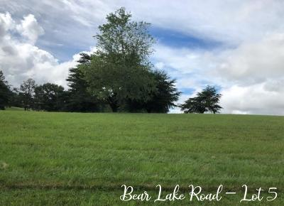 Residential Lots & Land For Sale: Lot 5 Bear Lake Road