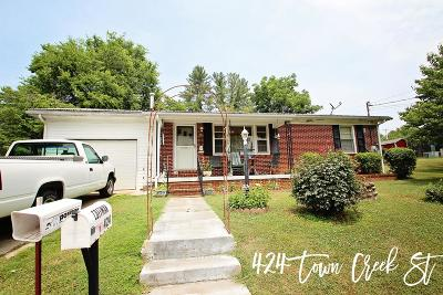 Sparta Single Family Home For Sale: 424 Town Creek Street