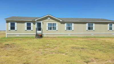 Panhandle Single Family Home For Sale: 485 Co Rd 2