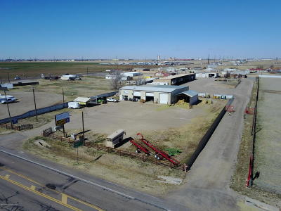 Randall County Commercial For Sale: 800 Fm 1151 (Claude)
