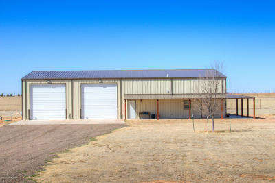 Randall County Commercial For Sale: 12420 Equestrian Trl