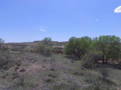 Bushland Residential Lots & Land For Sale