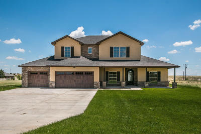 Canyon Single Family Home For Sale: 17701 Fm 2590 (Soncy)