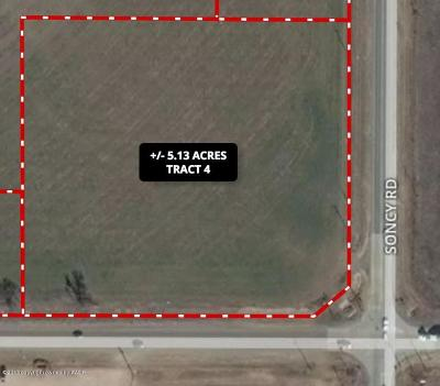 Amarillo Commercial For Sale: Fm 2219 NW Tract 4