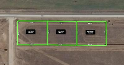 Amarillo Commercial For Sale: Fm 2219 SW Tract 3