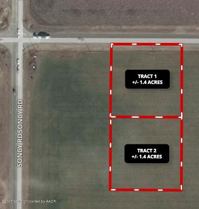 Amarillo Commercial For Sale: Fm 2219 SE Tract 1