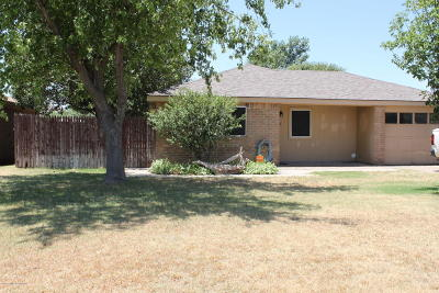 Panhandle Single Family Home For Sale: 707 Maple
