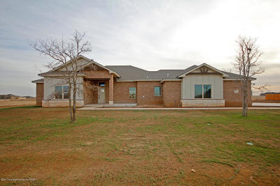 Amarillo Single Family Home For Sale: 9625 Hey Jude Ln