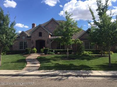 Randall County Single Family Home For Sale: 8003 New England Pkwy