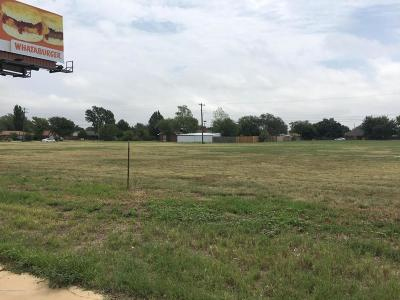 Commercial For Sale: Canyon Dr