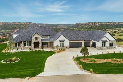 Single Family Home For Sale: 15600 Canyon Pass Rd