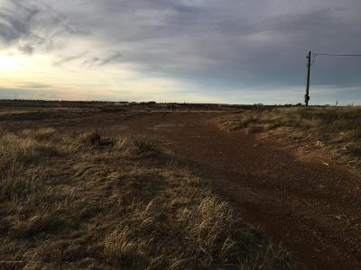 Amarillo Residential Lots & Land For Sale: 9701 Snowball Trl