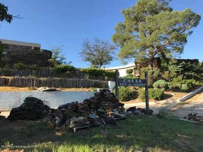 Amarillo Single Family Home For Sale: 200 Shore Dr