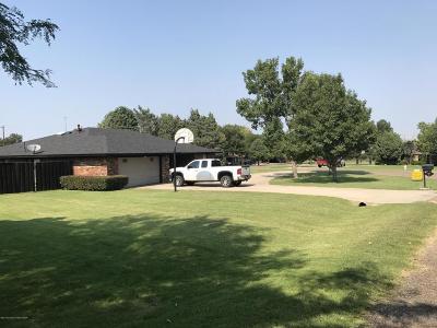 Borger Single Family Home For Sale: 404 Bois D Arc