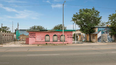 Commercial For Sale: 1328 10th SE Ave