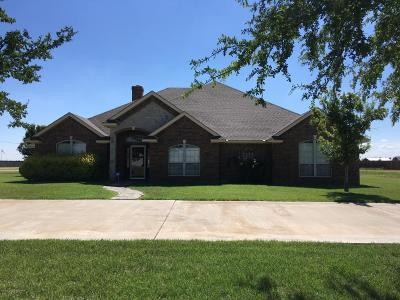 Amarillo Single Family Home For Sale: 9611 Chatham Rd