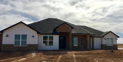 Amarillo Single Family Home For Sale: 10251 Beechcraft