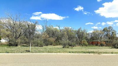 Residential Lots & Land For Sale: 30 Canyon View Dr
