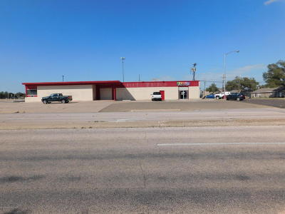 Potter County Commercial For Sale: 3420 15th Ave
