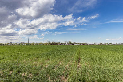 Hereford Residential Lots & Land For Sale: 1201 S Ave K