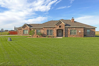Bushland Single Family Home For Sale: 1370 Calle Alex