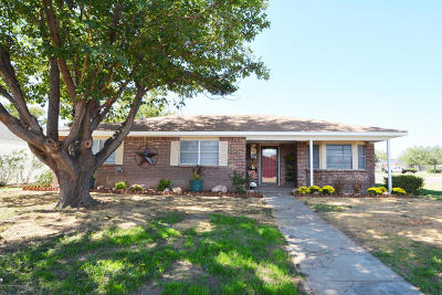 Canyon Single Family Home For Sale: 1000 Holly Ln