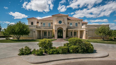 Amarillo Single Family Home For Sale: 7 Sandhills Ln