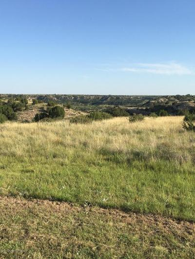 Amarillo Residential Lots & Land For Sale: 7300 Canyon Bend Rd