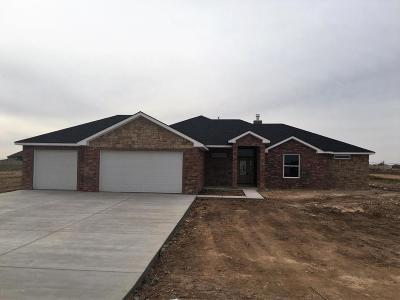 Amarillo Single Family Home For Sale: 15150 Hold Your Hand Dr