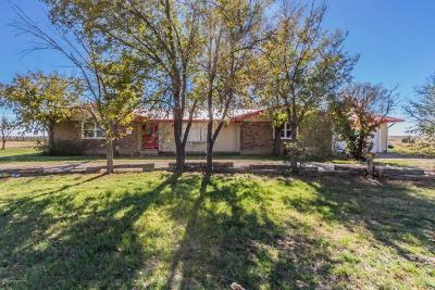 Amarillo Single Family Home For Sale: 16801 Fm 2219