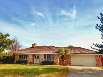 Borger Single Family Home For Sale: 307 Pinehurst