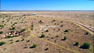 Residential Lots & Land For Sale: 7001 Rolling Prairie Trl