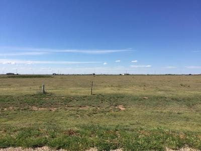 Amarillo Residential Lots & Land For Sale: 12820 Wandering Rd