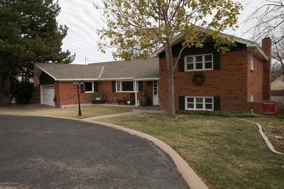 Amarillo Single Family Home For Sale: 2401 Teckla Blvd
