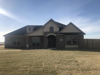 Amarillo Single Family Home For Sale: 8200 Blue Duck Trl